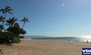 WSH Hawaii-365LoveHawaii