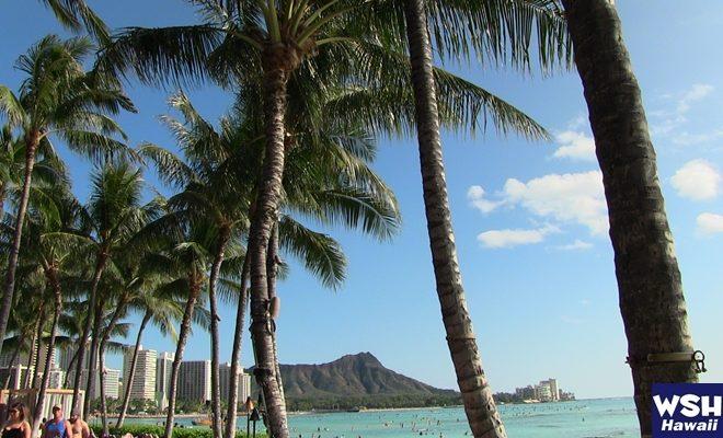 WSH Hawaii-ホワイトサンズホテル365Love Hawaii