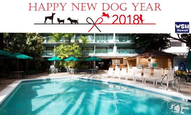 WSH Hawaii-Happy-New-Year2018