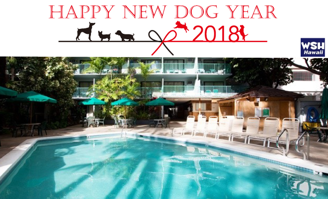 WSH Hawaii-Happy-New-Year2018